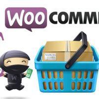 Lỗi sau khi update WooCommerce lên 4.4.0